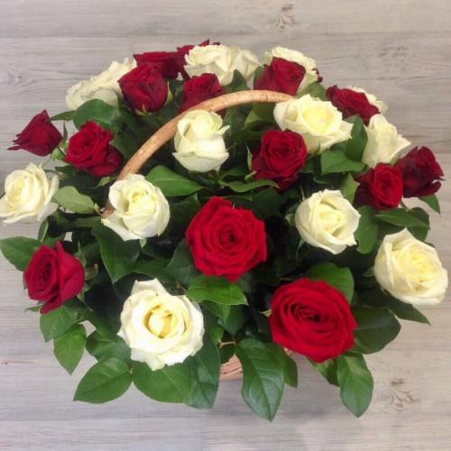 Корзина - 25 роз